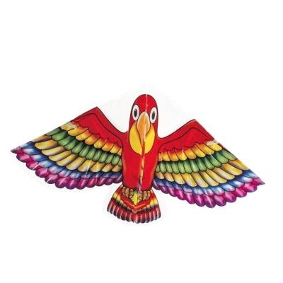 Létající drak - papoušek