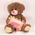 Plyšový medvídek - hnědý s polštářkem