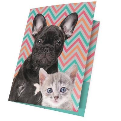 Desky s gumou A4 Pes a kočka