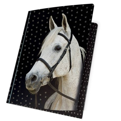 Desky s gumou A4 - Kůň