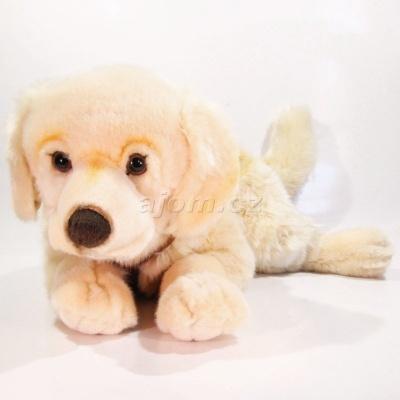 Plyšový Pes Zlatý retrívr velký 70cm