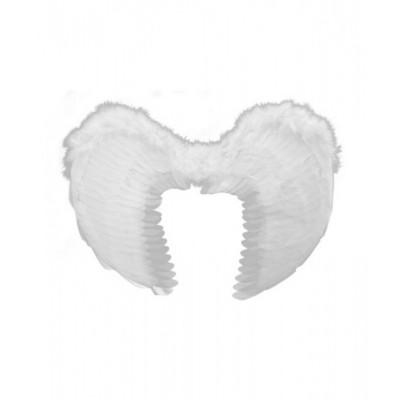 Křídla anděl - bílá 60x45cm