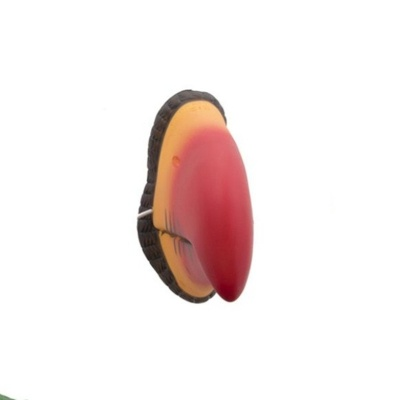 Zvířecí nos - zobák papoušek