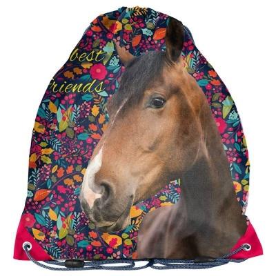 Školní pytel vak sáček barevný Kůň