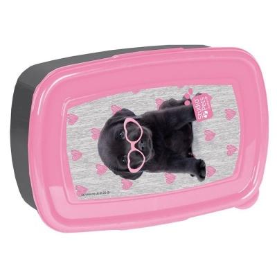 Svačinový box krabička na oběd Pejsek štěně s brýlemi