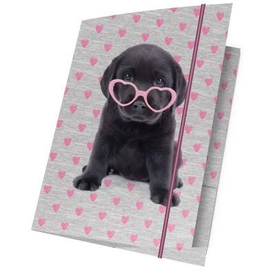 Desky s gumou A4 Pejsek štěně s brýlemi