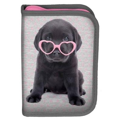 Školní pouzdro penál Pejsek štěně s brýlemi - s chlopněmi a vybavením