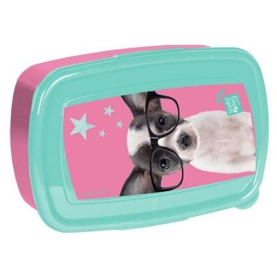 Svačinový box krabička na oběd Pejsek čivava s brýlemi