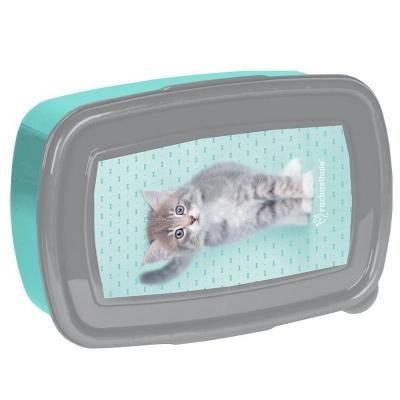 Svačinový box krabička na oběd Kočka s mašličkou