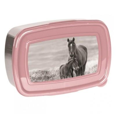 Svačinový box krabička na oběd Kůň a hříbě