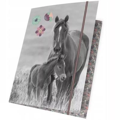 Desky s gumou A4 Kůň a hříbě