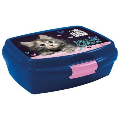 Krabička na svačinu Kočka kotě