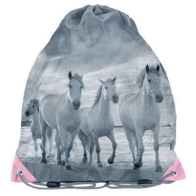 Školní pytel vak sáček Koně