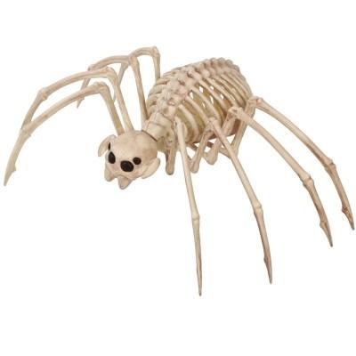 Kostra pavouk tarantule 35 x 20 cm