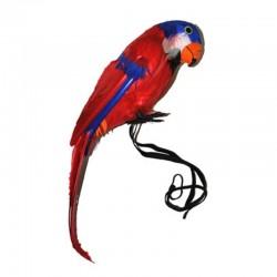 Papoušek 38cm