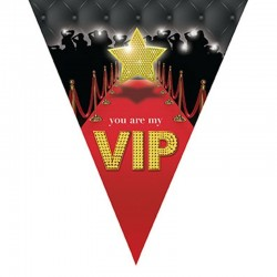 Girlanda vlajková VIP - 5m