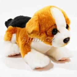 Plyšové štěně - bígl