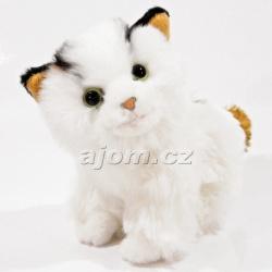 Plyšová kočka - černé ouška