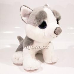 Plyšové štěně Husky - velké oči