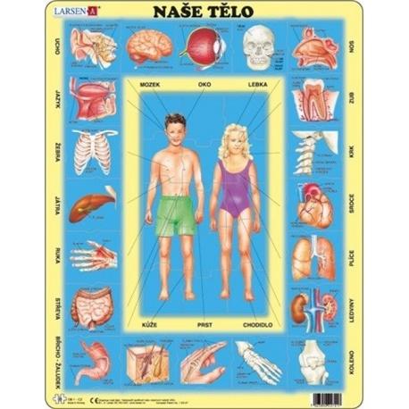 Puzzle Larsen - Naše tělo
